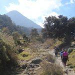 hiking-volcan-santiaguito-xela